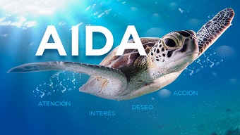 AIDA-NAME-ABOUT